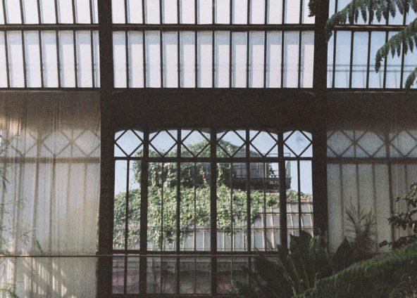 Jardins des Plantes - Paris
